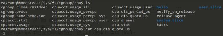 Cgroup/cpu