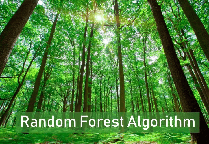 Machine Learning(13)- Random Forest