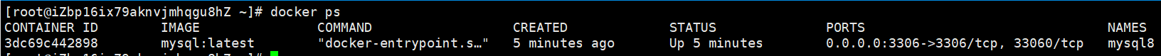 Docker 搭建 lnmp 环境