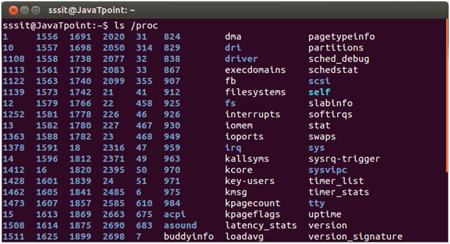 Linux fhs Memory Directory