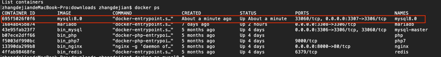 Docker安装Mysql8.0