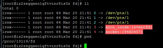 玩转PHP网络编程全套
