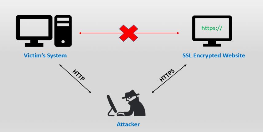 """""""剥离"""" SSL 原理图"""