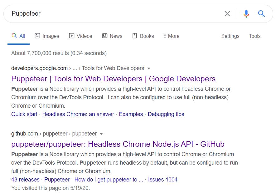 Google 搜索 Puppeteer