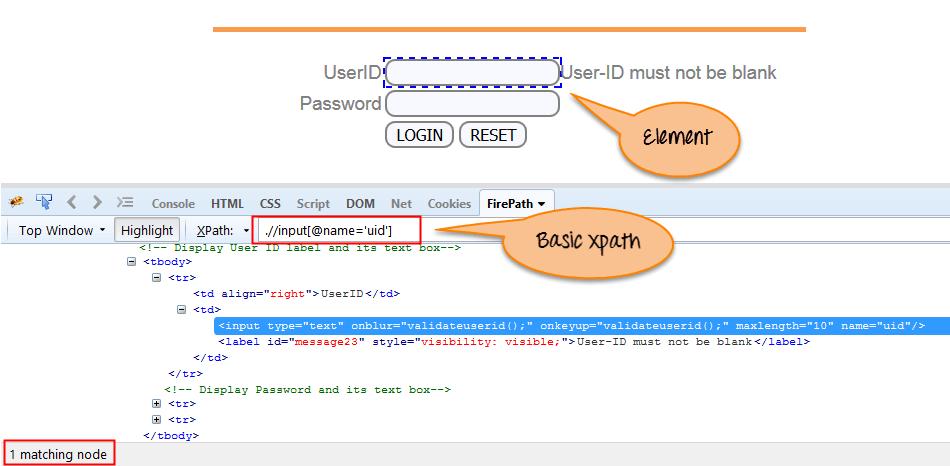 XPath in Selenium WebDriver: Complete Tutorial