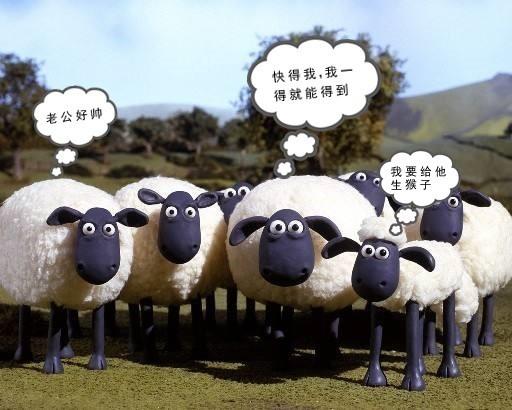 羊群,咩,咩,咩